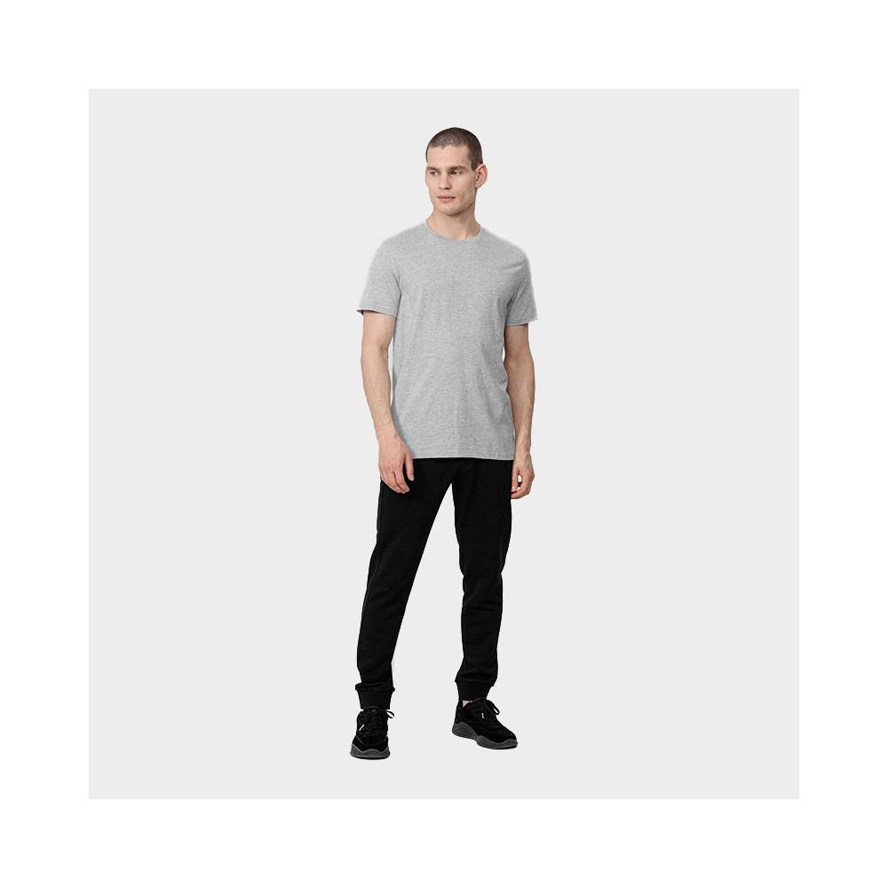 Koszulka Męska 4F TSM352 NOSH4 Szary